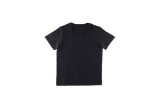 高島ちぢみ Tシャツ