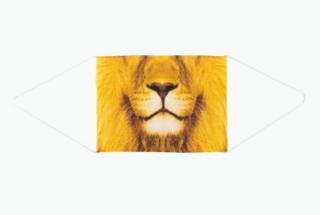 Mask lion