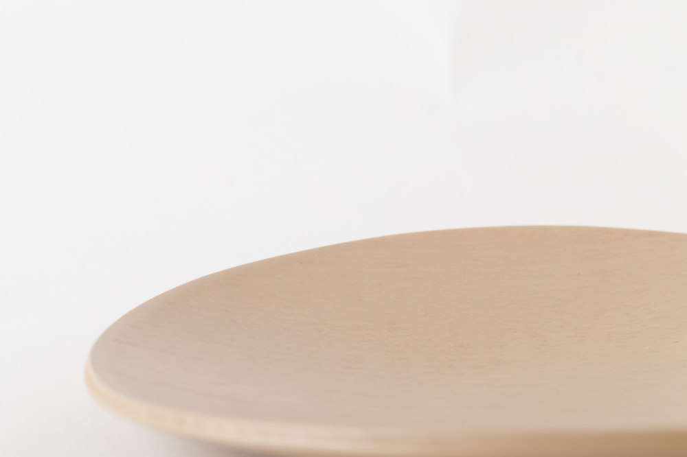 NODATE plate R100 白