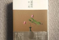 【本を眺める・考えたこと】川瀬敏郎 一日一花と読書遍歴