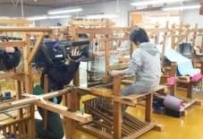 【日々のこと】NUNUSAAAの琉球絣クッション展、テレビ取材。