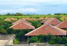 【日々のこと】沖縄赤瓦を多角的な視点で明らかにしたい。