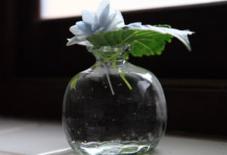 ガラスの花器