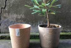 【イベント/商品紹介】植木鉢も作っています〜ろくろ舎の仕事展はじまりました〜