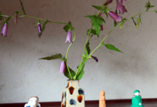 増えていく人形たち。と花。