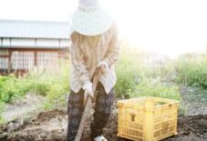 もんぺの着方1 – 農作業で