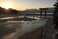 【雑感にょろり】宮島へにょろり。もんぺイベントを練り練り。