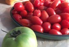 【雑感にょろり】1200℃の熱をため込み、赤く熟れるトマト。