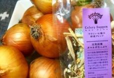 【商品紹介】乾燥野菜で楽して美味しく