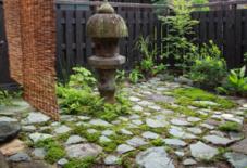 庭と苔と石。