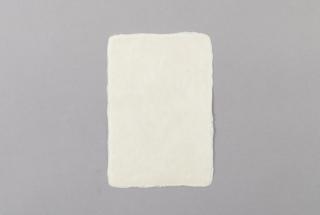 ハガキ 楮 青皮
